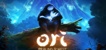 03 – Ori and the Blind Forest
